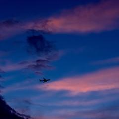 Flying Away (Ennev) Tags: 2019 50mm pentax pentaxk3 pentaxk3ii clouds june mileend montreal sky sunset quebec canada smc pentaxfa f14 smcpentaxfa50mmf14
