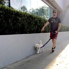 IMG_1778 (danimaniacs) Tags: hot sexy man guy dog pet beard scruff shorts