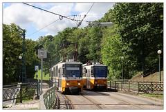 Tram Budapest - 2019-33 (olherfoto) Tags: tram tramcar tramway villamos strasenbahn budapest ungarn hungary tatra t5c5