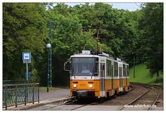 Tram Budapest - 2019-34 (olherfoto) Tags: tram tramcar tramway villamos strasenbahn budapest ungarn hungary tatra t5c5