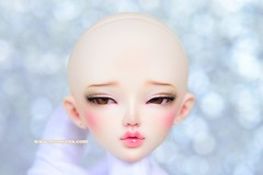 MNF Chloe SP. SP. [ MOD. eyes ] (♥..Nomyens..♥) Tags: bjd balljointdoll toy doll custom faceup paint painting painted repaint handmade nomyens nomyenscom dollfairyland minifee chloe msd modifydoll modifyeyes