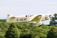 G-AEXF Old Warden 02/06/19 (Andy Vass Aviation) Tags: oldwarden gaexf mewgull