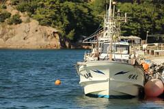 Fishing boat (Teruhide Tomori) Tags: harbor japan japon izumo landscape fishingharbor fishingboat sea coast seashore 日本 日本海 漁船 漁港 海 海岸 出雲 島根 宇龍