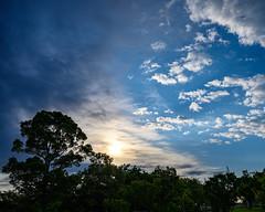 梅雨時の朝日 (shinichiro*) Tags: 20190618dsc7693 2019 crazyshin nikonz6 z6 nikkorz2470mmf4s june summer gyoda saitama japan jp 48106762661 5315276 201906gettyuploadesp