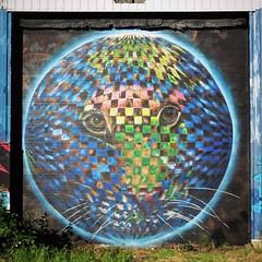 #Ghent update, or should I say #CeePil update. Another new piece by #theguythatneverstops. . #Gent #streetart #graffiti #urbanart #graffitiart #streetartbelgium #graffitibelgium #visitgent #muralart #streetartlovers #graffitiart_daily #streetarteverywhere (Ferdinand 'Ferre' Feys) Tags: instagram gent ghent gand belgium belgique belgië streetart artdelarue graffitiart graffiti graff urbanart urbanarte arteurbano ferdinandfeys ceepil