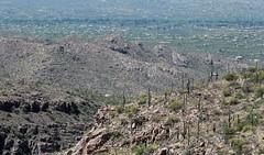 Tanque Verde Valley (zeesstof) Tags: zeesstof vacation arizona tucson desert mountlemmonhighway santacatalinamountains igneous granite precambrianintrusives tertiaryintrusives geology