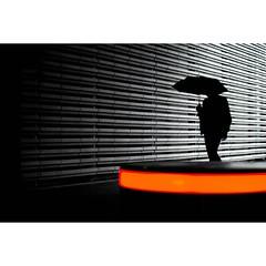 Valerio © (@duckstreet27) (eyephotomagazine) Tags: photo photography photographer street streetphoto streetphotography streetphotographer photooftheday picoftheday instagood capturestreets streetclassics streetart dreamstreets streetstyle urbanstyle urbanstories storytelling streetlife bnw streetleaks color colorphoto colorphotography colorstreet light shades shadows silhouettes umbrella lightandshades lightandcolors mood moody moodygram futuristic orange reflections negativespace magazine feature art artist photoart featured onlinemagazine photomagazine eyephotomagazine