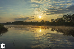 Sunrise at De Groote Peel (Frankhuizen Photography) Tags: meerbaansblaak sunrise ospel nederlands 2019 limburg nature sunlight sun landscape reflection lake sky zonsopkomst natuur zonlicht zon landschap reflectie meer hemel lecoucherdusoleil lanature leverdusoleil soleil paysage réflexion lac ciel sonnenaufgang natur sonnenlicht sonne landschaft reflexion see himmel fog twilight standingwater mist schemering stilstaandwater brouillard crépuscule eaustagnante nebel dämmerung stehendeswasser