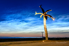 The Palm (Ellen van den Doel) Tags: nacht night blauw natuur landscape nachtwolken hour nature overflakkee nederland licht evening clouds goeree lichtende noctilucent zeldzaam landschap fenoneem juni uur netherlands sky lucht blue 2019 wolken field middelharnis zuidholland