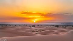 Sunrise in the desert (patuffel) Tags: sahara sunrise sand dunes dune erg merzouga chebbi leica morning 50mm morocco marokko m10 ergs summicron