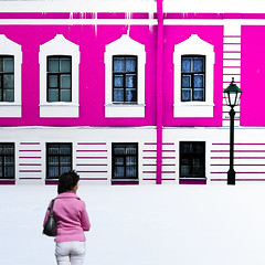 Pink Lady (Le.Patou) Tags: white russie russia россия saintpetersbourg stpetersburg санктпетербург fz1000 challenge smileonsaturday thinkpink snow rose pink neige mur wall fortress winter hiver square challengesurflickr scene streetscene cof080mari cof080dmnq cof080mark
