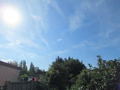 Saturday, 22nd, Sunshine in a blue sky IMG_0804 (tomylees) Tags: essex morning summer june 2019 22nd saturday weather sky sunshine