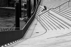 Lonely on the steps / the ying yang of the harbor (Özgür Gürgey) Tags: 2019 24120mm bw d750 hafen hamburg nikon architecture diagonal geometry lines people steps street