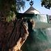 Harar shrine