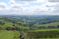 Looking down the valley (Halliwell_Michael ## Offline mostlyl ##) Tags: calderdale wainstalls westyorkshire nikond40x 2019 pennineviews landscapes mill millchimney cattle farmland green hills