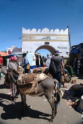 Harar Gate