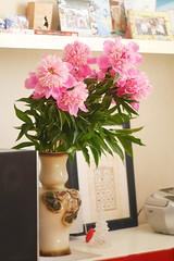 P1490881 (Sergei Spiridonov) Tags: paeónia flowers helios442 manuallens manualfocusing