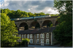 Looking up (Mark Gowing) Tags: class142 dmu train bargoedviaduct transportforwales