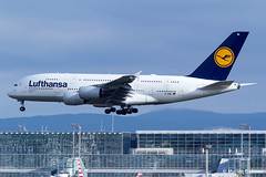 Lufthansa Airbus A380-841  |  D-AIML  |  Frankfurt Rhein-Main  - EDDF (Melvin Debono) Tags: lufthansa airbus a380841 | daiml frankfurt rheinmain eddf cn 149 melvin debono spotting canon plane planes photography airport airplane aircraft aviation fra deutschland germany