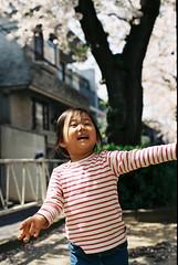 FH000020.jpg (kz75) Tags: film fujifilm c200 fujicolor fujicolorc200 nikonf3