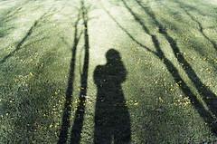 (Tamar Burduli) Tags: tamarburduli 35mm analog film portrait nature grass sun shadow shadows self selfportrait autoportrait photographer female kazbegi travel georgia zenit kodak