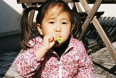 FH000010.jpg (kz75) Tags: film fujifilm c200 fujicolor fujicolorc200 nikonf3
