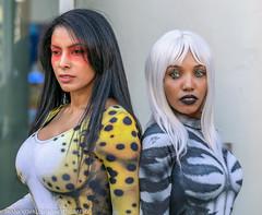 Cosplayer(s) at the 2019 Wondercon - Sunday (Alaskan Dude) Tags: wondercon wondercon2019 2019wondercon comicon people portrait portraits cosplay cosplayer cosplayers costumes