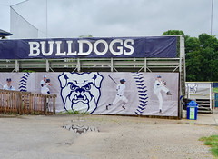 Butler Bulldogs banner (mrgraphic2) Tags: butler university indianapolis indiana banner seats sign brand blue