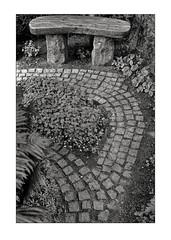 Bench (K.Pihl) Tags: pellicolaanalogica aarhus film analog blackwhite monochrome bench cemetary cobblestones denmark kodaktrix400320 schwarzweiss bw vestrekirkegård hc110e147 olympusom4