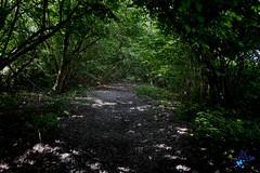 2019 - 47ème randonnée - 19 juin