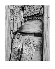Crumbling (agianelo) Tags: wood fence abstract monochrome bw bn blackandwhite