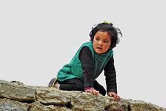 On the wall !! (Lopamudra !) Tags: lopamudra lopamudrabarman lopa portrait kid darchick darchik village society aryan girl baby ladakh jk india himalaya himalayas highaltitude highland culture civilisation civilization pretty beauty beautiful