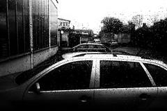 Bleak (Ricoh GR1) (stefankamert) Tags: film analog analogue ricoh gr gr1 ricohgr1 kodak trix noiretblanc noir stefankamert blackandwhite blackwhite bw rain car window