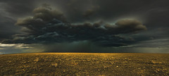 The Tempest (Tom Herlyck) Tags: amazing america awesome a7rii beautiful bigsky colorado clouds camera digital easterncolorado exposure flickr greatamericandesert grass highplains light landscape sky southeastcolorado shortgrassprairie southerncolorado storm storms usa weather panorama kiowacounty