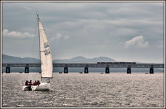 Sailing by..... (david.hayes77) Tags: dundee scotland 2019 taybridge firthoftay river yacht loki class170 scotrail turbostar 1l56 contrejour backlit intothelight boat dmu sailingboat sailing sailingby