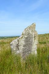 Stripple Stones (RoyReed) Tags: bodminmoor stripplestones standingstones stonecircle