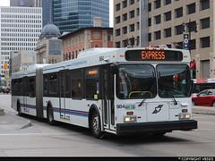 Winnipeg Transit #984 (vb5215's Transportation Gallery) Tags: winnipeg transit 2004 exoc transpo new flyer d60lf