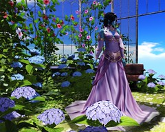 Summer Sky Garden (LiangScorpio) Tags: fallengodsinc flowers fantasy