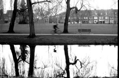 Biker's reflect (Elios.k) Tags: horizontal outdoors people oneperson silhouette bicycle bike cycling motionspeed motionblur fiets dutch park dommel river water trees city buildings houses bench reflection dof depthoffield focusonforeground backgroundblur blackandwhite bw mono monochrome travel travelling march 2018 canon camera photography eindhoven northbrabant noordbrabant netherlands nederland europe film analoguephotography scannedfilm agfaapx100 analogfilm grain contrast canona1 a1 analogcamera annefrankplantsoen