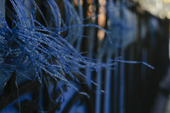 Urban Nature (youdoph) Tags: wires city urban fence blue cityscape