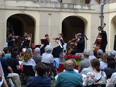 P6206966 DSC02550 (pierino sacchi) Tags: archi cairoli classica collegio cortile cortiliinmusica musica solisti