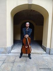 P6206923 DSC02507 (pierino sacchi) Tags: archi cairoli classica collegio cortile cortiliinmusica musica solisti
