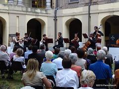 P6207228 DSC02813 (pierino sacchi) Tags: archi cairoli classica collegio cortile cortiliinmusica musica solisti