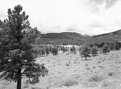 View from S Navy Hill Road (LarsHolte) Tags: blackandwhite bw usa mountains 120 film monochrome rollei analog 35mm mediumformat landscape nationalpark 645 pentax ishootfilm retro 120film d76 80s rockymountain analogue 6x45 f35 pentax645 filmphotography morainepark classicblackwhite 645n 80iso smcpentaxa filmforever larsholte homeprocessing
