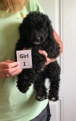 Irma Girl 1 pic 2 6-22