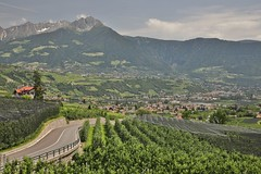 View onto Meran (twomphotos) Tags: italy south tyrol südtirol mountain lake berge see schnee wasser wiese nature natur scenic water waser meran