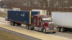Kenworth W900 (NoVa Truck & Transport Photos) Tags: kenworth w900 transcorps enterprises harrisburg pa umax 53 can container truck big rig 18 wheeler