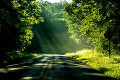 DILO - Summer Solstice June 21 2019 (6) (tommaync) Tags: dilojun2019 june 2019 june212019 nikon d7500 northcarolina nc summer summersolstice solstice nature sunrays rays trees road sunshine chathamcounty chatham