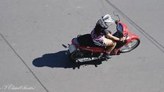 Aerial view (VCLS) Tags: vcls valmir bike biker moto motocicleta motorcycle moped motoneta lambretta lambrettando lambretteira lambrettar lambrettista scootering scooter cub girl woman mulher moça menina wheels twowheels vespa vespagirl lambrettagirl motoqueira commuting riding traveling urban candid rua street streetshot scooterist