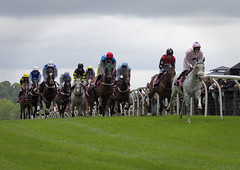 Photo of Racing at Cartmel